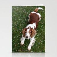 Welsh Springer Spaniel -… Stationery Cards