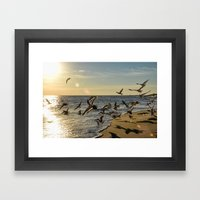 Birds in Flight Framed Art Print
