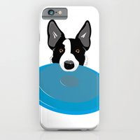 Border Collie - Disc Dog 2 iPhone 6 Slim Case
