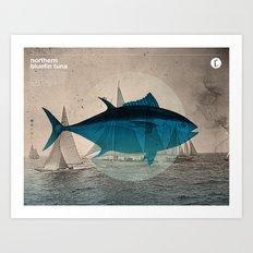 Northern Bluefin Art Print