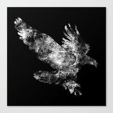 Hawk Dive Canvas Print