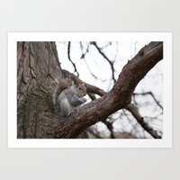 Squirrel with peanut Art Print