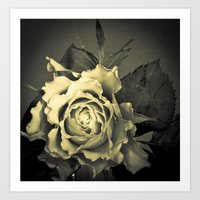 Retro Rose Art Print
