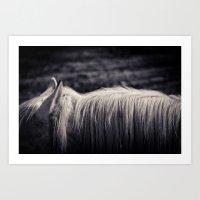 White Horse Mane Art Print