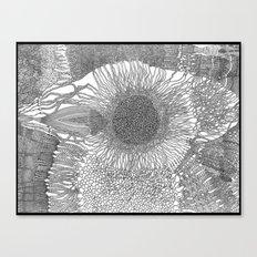 Eyeshine Canvas Print