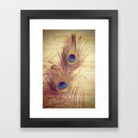 Peacock  Framed Art Print