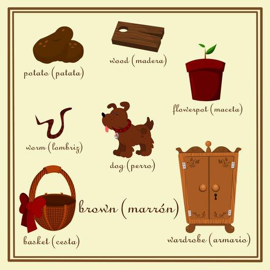 Colors: brown (Los colores: marrón) Art Print