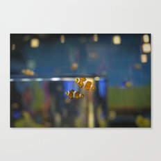 In the Tank: Found Canvas Print