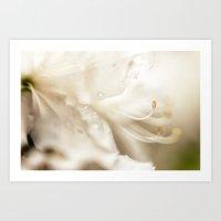 invite {white} Art Print