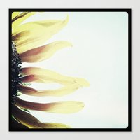 FLOWER 016 Canvas Print