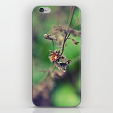 The Summer Bug iPhone & iPod Skin