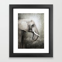 The Old Elephant Framed Art Print