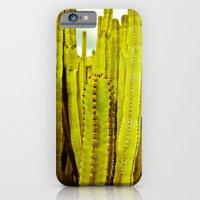 E. Canariensis iPhone 6 Slim Case