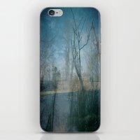backyard iPhone & iPod Skin