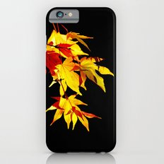 Golden Acer iPhone 6 Slim Case