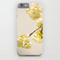 I love cherry blossoms iPhone 6 Slim Case