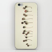 Acorn Collection iPhone & iPod Skin