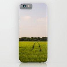 Corn 2 iPhone 6 Slim Case