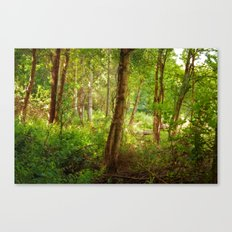 Surreal woodland Canvas Print