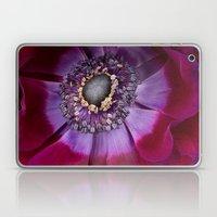 Anemone Coronaria - Macr… Laptop & iPad Skin