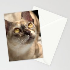 Study of a Cat Stationery Cards