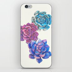 Vibrant Succulents  iPhone & iPod Skin