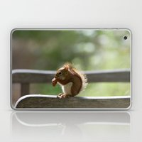 Red Squirrel Snack Time Laptop & iPad Skin