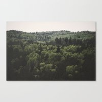 The Woods of Gauja Valley Canvas Print