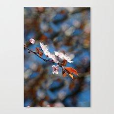 Zen Blossom Canvas Print