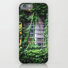Window Dressing iPhone 6 Slim Case
