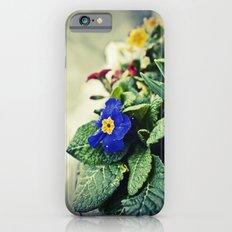 The Flower Pot iPhone 6s Slim Case