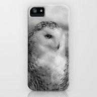 Snowy Owl - B & W iPhone (5, 5s) Slim Case