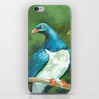 NZ Native Pigeon Kereru iPhone & iPod Skin