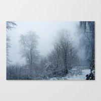 A Walk Through Fog And S… Canvas Print