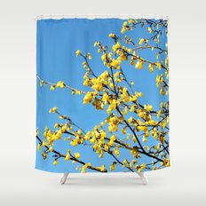 boom boom bloom Shower Curtain