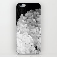 White Flowers No.2 iPhone & iPod Skin