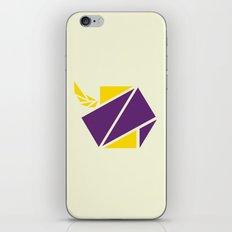 Hexagon iPhone & iPod Skin
