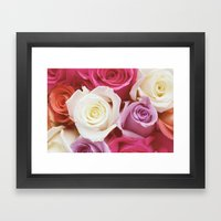 Romantic Rose Framed Art Print