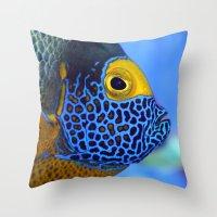 Blue-faced Angelfish Throw Pillow