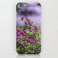 Summer's Spell iPhone 6 Slim Case