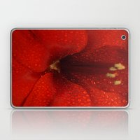 I think you get the point-settia Laptop & iPad Skin