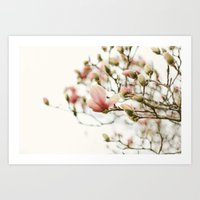 Portraits of Spring - II Art Print