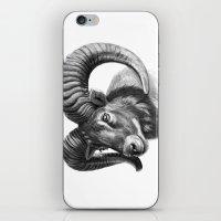 The mouflon G125 iPhone & iPod Skin