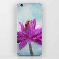 Tropical Beauty iPhone & iPod Skin
