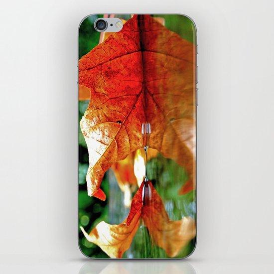 Autumn leaf reflected iPhone & iPod Skin