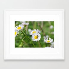 Bug on flowers Framed Art Print