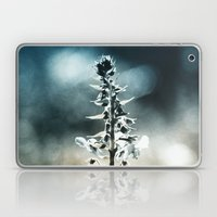 Ametrin Laptop & iPad Skin