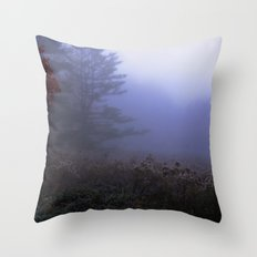 Early morning in a foggy and frosty autumn morning at Sharron Woods Throw Pillow
