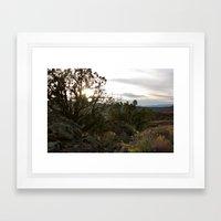 Juniper Sun Framed Art Print