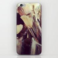 Paintbrush Heaven iPhone & iPod Skin
